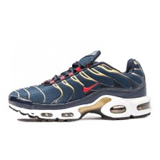 Nike Air Max Plus TN Mens (Blue-Gold) 166