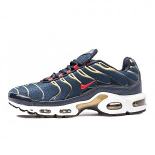 Кроссовки Nike Air Max Plus TN Mens (Blue-Gold) 166